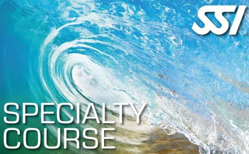 SSI-Specialty-Course-556x310